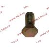 Болт пустотелый М12х1,25 (штуцер топливный) H HOWO (ХОВО) 90003962607 фото 3 Нальчик