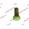 Болт пустотелый М10х1,0 (штуцер топливный) H HOWO (ХОВО) 81500070054 фото 3 Нальчик